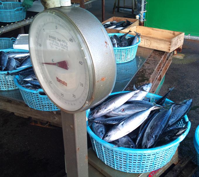 2010-12-15 鮮魚1.jpg