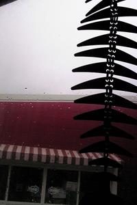 090722_雨.jpg