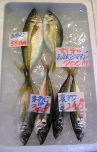1,2 鮮魚3.jpg