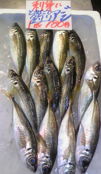 1,29 鮮魚4.jpg