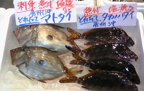 100125_鮮魚1.jpg
