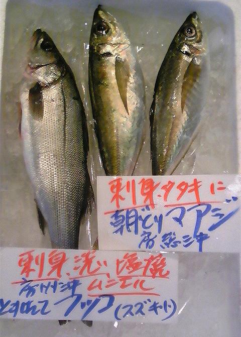 100125_鮮魚5.jpg