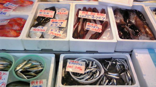 100208_鮮魚2.jpg