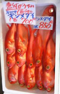 2,5 きんめ鮮魚.jpg