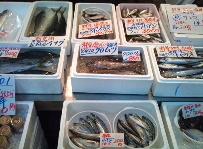 2010-10-16 鮮魚1.jpg